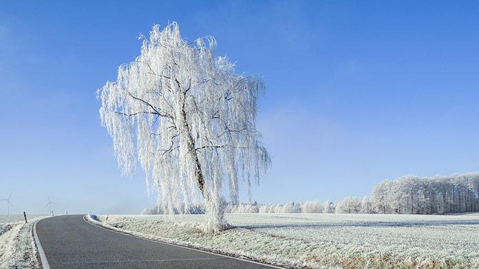 Opäť sa vrátia silné mrazy: Najmrazivejšie bude v týchto okresoch