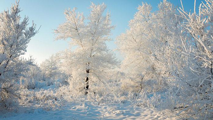 Po snežení to opäť príde: Meteorológovia varujú, vydané výstrahy