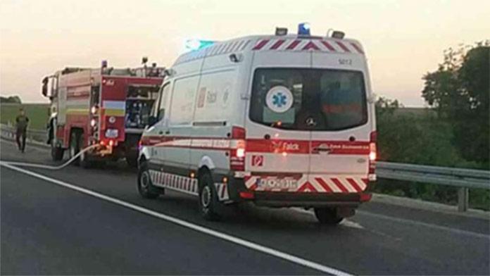 Tragická nehoda neďaleko Stropkova: Mužovi vbehla do cesty srna, zraneniam podľahol
