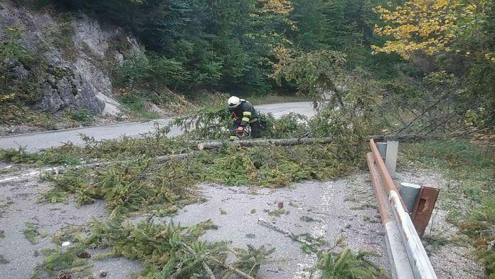 Silný vietor si vyžiadal už 171 zásahov hasičov: Kde je situácia najhoršia?