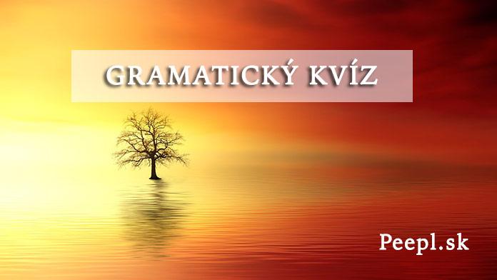 Slováci, ukážte sa v kvíze zo slovenského jazyka: Poznáte synonymá?