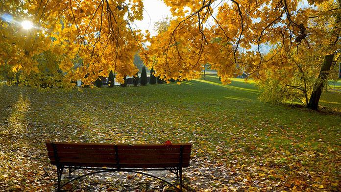 Aké bude počasie v sobotu 16. novembra?