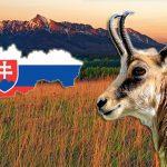 Ako dobre poznáte naše krásne Slovensko? Otestujte sa v kvíze z rôznych oblastí